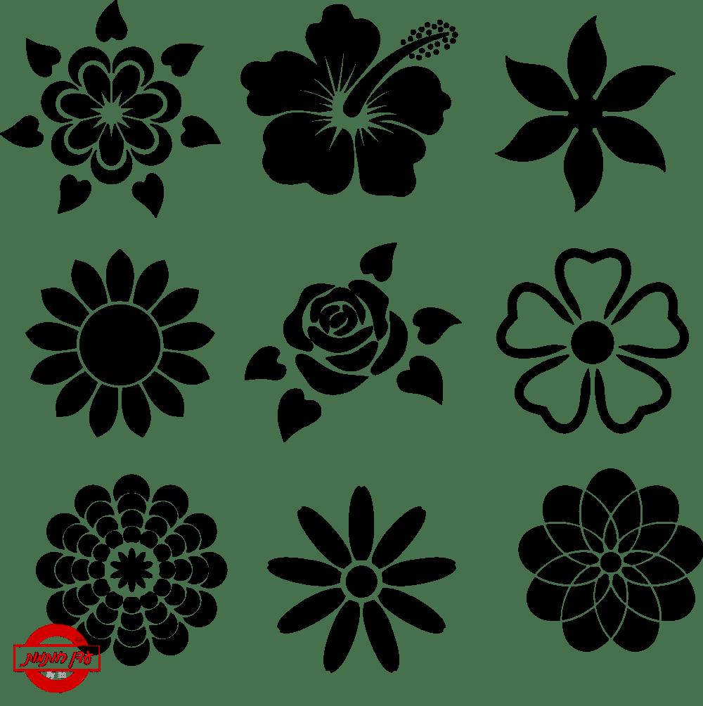 שבלונה פרחים